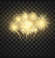 festival firework colorful fireworks holiday vector image vector image