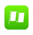 flag of ireland icon digital green vector image vector image