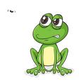 Happy Frog Fly vector image vector image