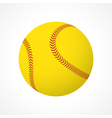 Softball ball vector image vector image