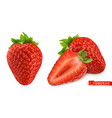 strawberry image fresh fruit 3d realistic icon vector image vector image