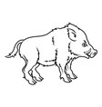 stylised boar vector image vector image