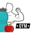 bodybuilder fitness fruit water diet vector image vector image