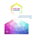 Color on an abstract of a modern design vector image vector image