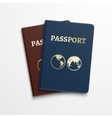 Passports international identification document vector image vector image