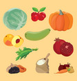vegetables berries fruits dried fruits greens vector image vector image