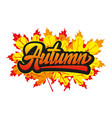 with calligraphic inscription autumn vector image vector image