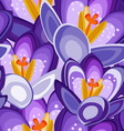 crocus flower seamless background vector image vector image
