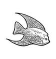 fish black engraving vintage vector image vector image