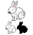 set bunny cartoon vector image