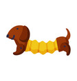 stuffed dachshund dog batoy cute object for vector image vector image