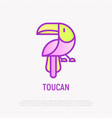 toucan thin line icon modern vector image