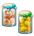 banks with canned lemons and eggs food vector image