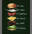 burger ingredients vector image vector image