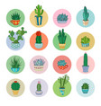 cartoon cacti and succulent icon set vector image vector image