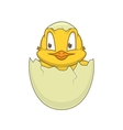 Chicken in egg Cheerful cute character vector image vector image