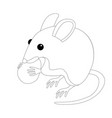 mouse with nut vector image