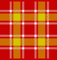 red plaid pattern vector image