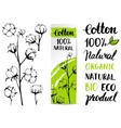 Set of hand draw cotton plant vector image