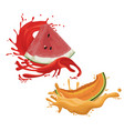 watermelon and melon vector image