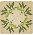 olive eco old background vector image