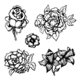 Set of black and white ink style flowers vector image vector image
