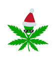 smiling happy marijuana weed vector image