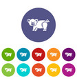 cute pig icons set color vector image