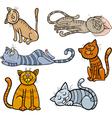 happy and sleepy cats cartoon set vector image vector image