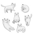 set cartoon white cats vector image