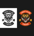 tiger fight club martial arts emblem two vector image