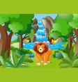 wild lion living in the forest vector image vector image