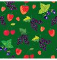 Berries seamless pattern - strawbery blackberry vector image vector image