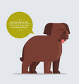 briard long haired dog with chat bubble speech vector image vector image