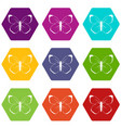 butterfly icon set color hexahedron vector image