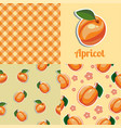 set seamless texture with apricot vector image vector image