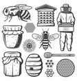 vintage honey elements collection vector image vector image