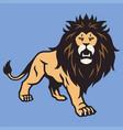 wild lion cartoon mascot standing vector image vector image