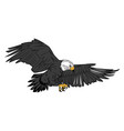 american bald eagle flying wildlife image vector image