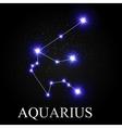 Aquarius Zodiac Sign with Beautiful Bright Stars vector image vector image