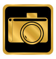 camera button on white vector image vector image