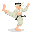 Cartoon Karate Boy vector image
