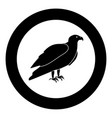 eagle black icon in circle vector image