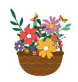 wicker basket with a bouquet flowers spring vector image