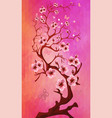 beautiful cherry blossom on triangle background vector image