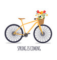 bicycle with a bouquet spring flowers eps10 vector image