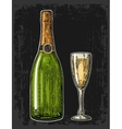 Champagne glass and bottle vector image