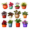 collection of different plants grup vector image vector image