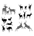 deer stag fawn and doe silhouettes vector image