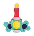 mexican independence day tequila bottle flowers vector image vector image
